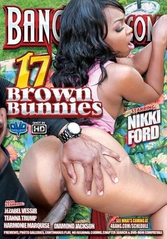 Brown Bunnnies 17