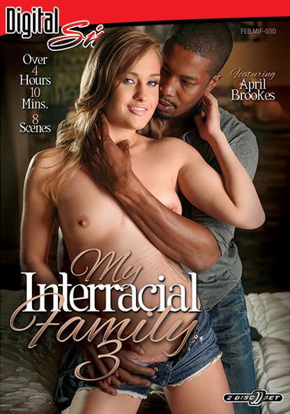 My Interracial Family 3