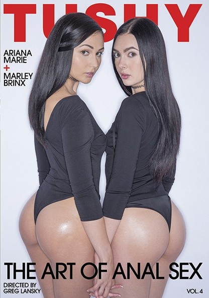 The Art Of Anal Sex 4